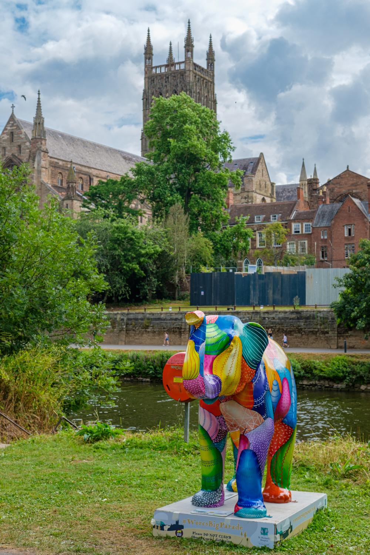Worcester elephants