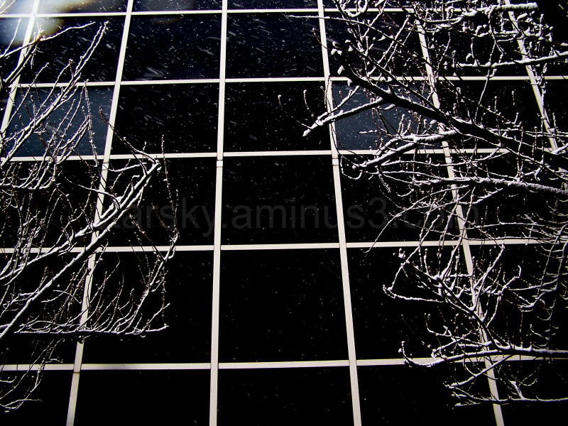 Black panes give a window into winter's death