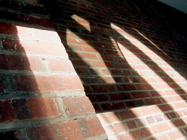 Shadows cast onto a brick wall