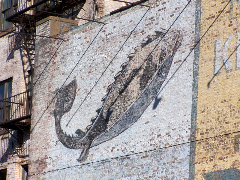 Seafood advertising on a brick wall