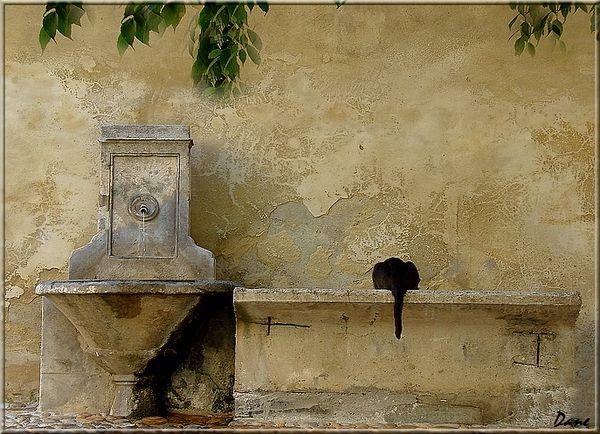 Chat se désaltérant à la fontaine