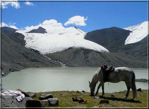 Halte au pied des glaciers en Mongolie