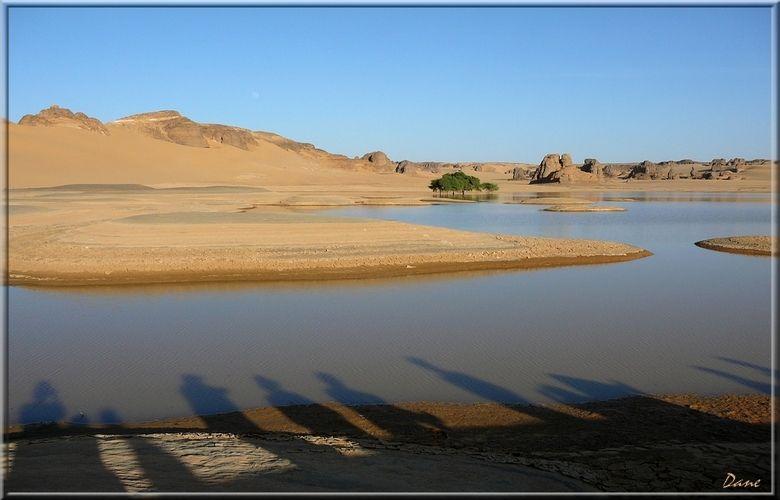au bord du lac dans le désert