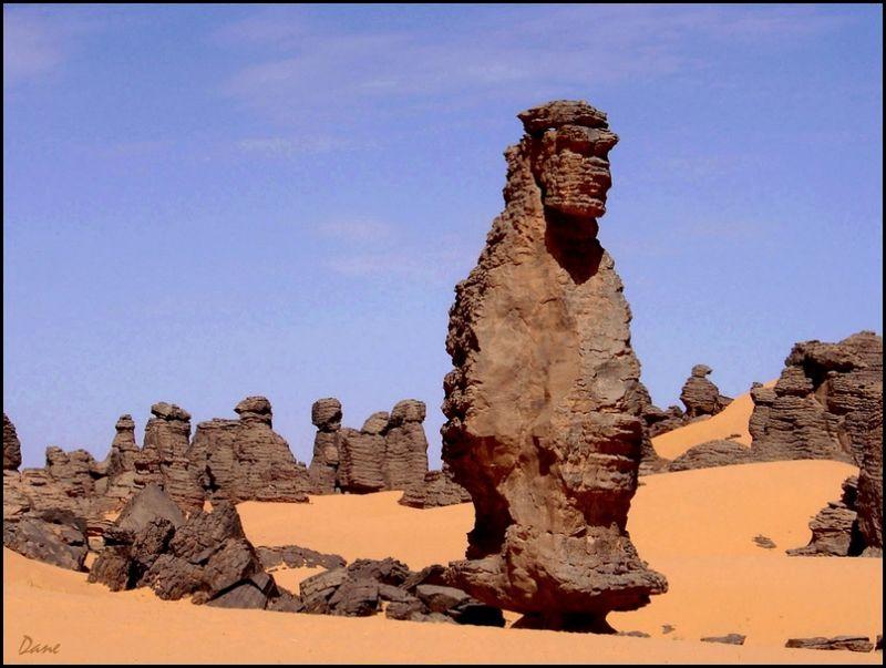 Pierres qui marchent dans le désert.