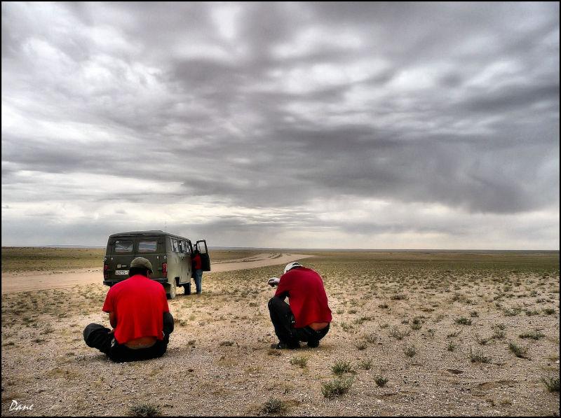 Une halte à la frontière du Gobi.