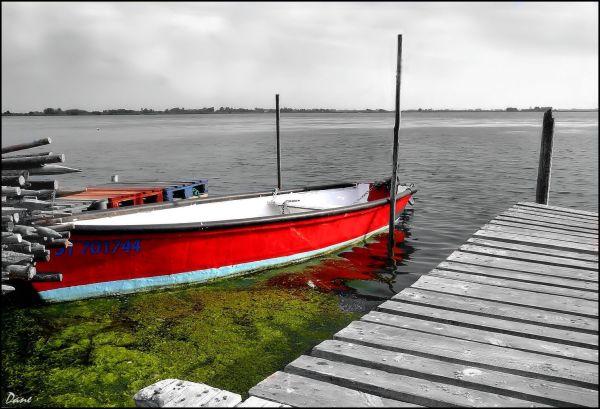 Une barque dans le matin