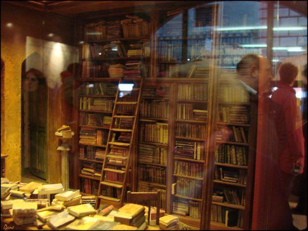 Dans la bibliothéque.. des reflets ..