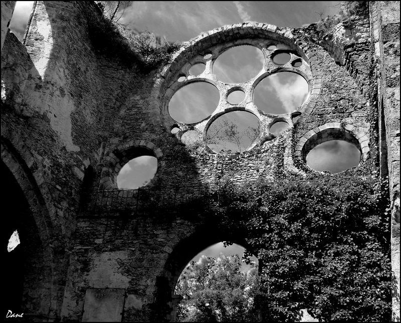 Dans les ruines de l'abbaye des Vaux de Cernay..