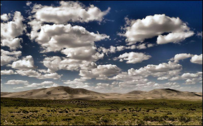 Le désert est au loin,  là où l'herbe s'arrête ..