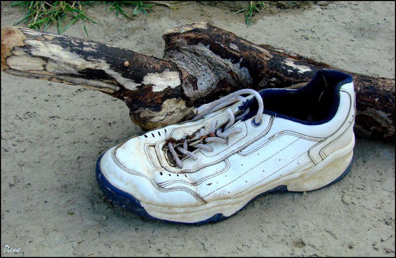 Chaussure et bois flotté