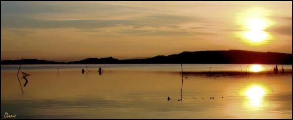 Le soir tombe sur les étangs ..
