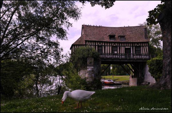 vieux moulin pendu sur la Seine à Vernon