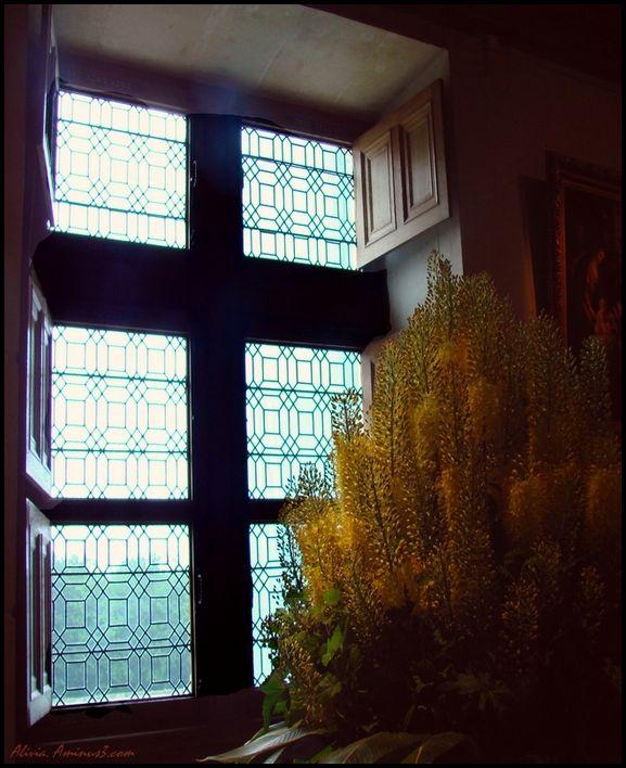Devant la fenêtre du chateau..