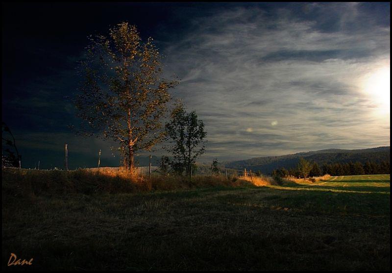 lumière du soir ..