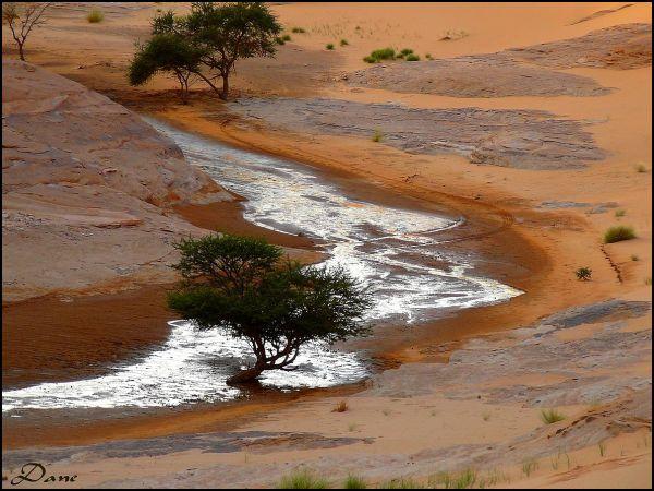 Mirage d'eau entre les dunes ..