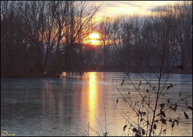 Un jour d'hiver sur la Loire ..