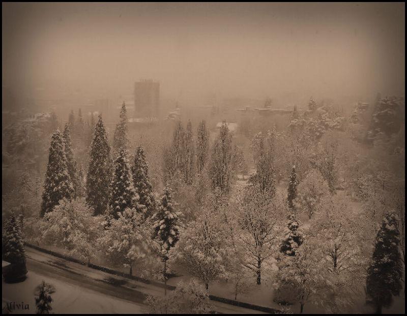 Tombe la neige ..