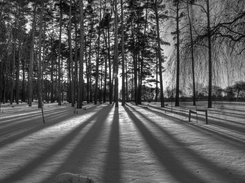Skogskyrkogården Sunset