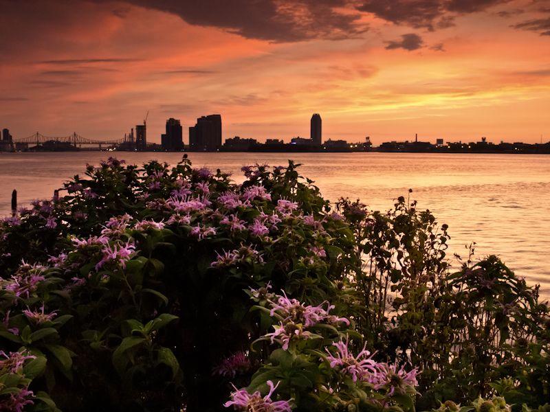 East River Sunrise 2