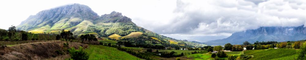 Stellenbosch Wine Region Panoramic