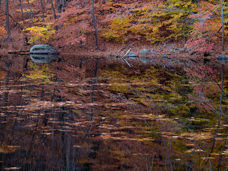 Fall Reflections (2)