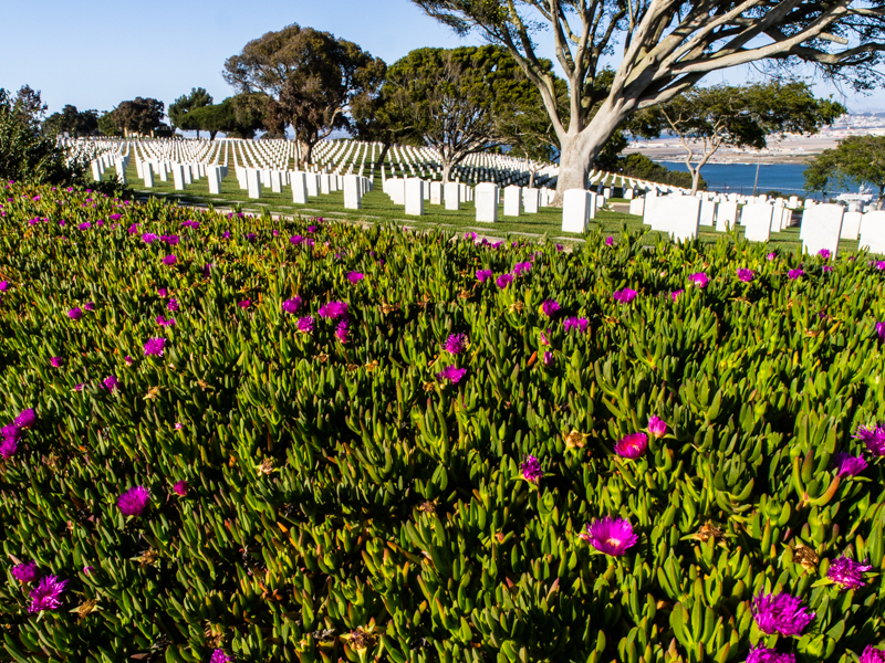 Cali: Fort Rosecrans Military Cemetery