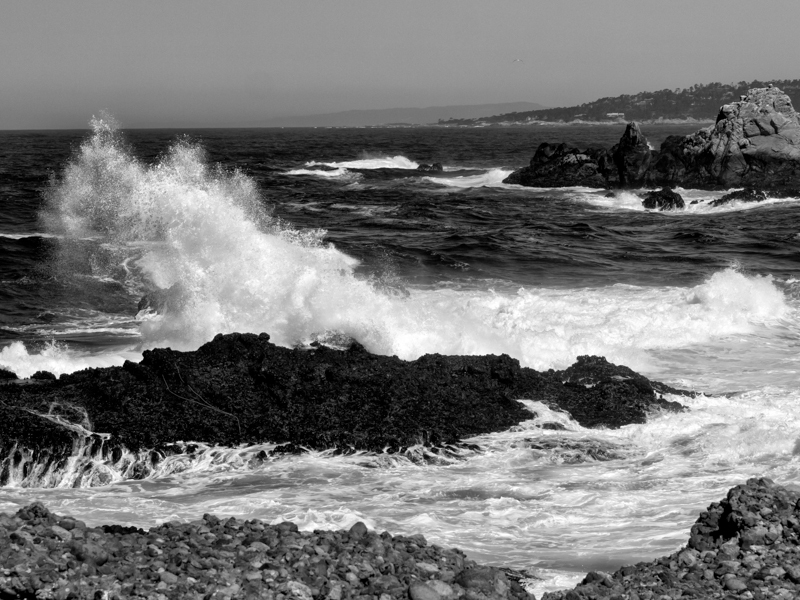 Cali: Waves at Point Lobos