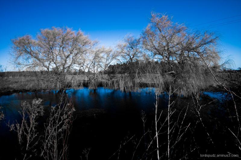 Panxworth oasis