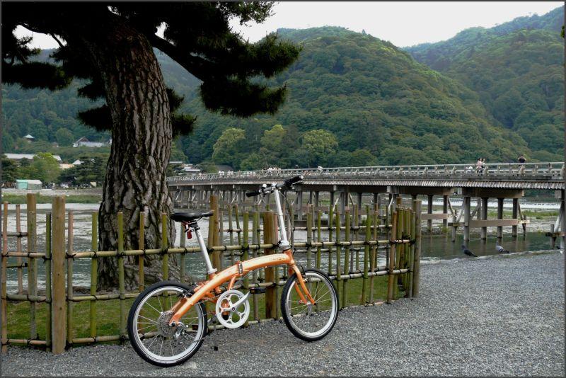 A bicycle at arasiyama