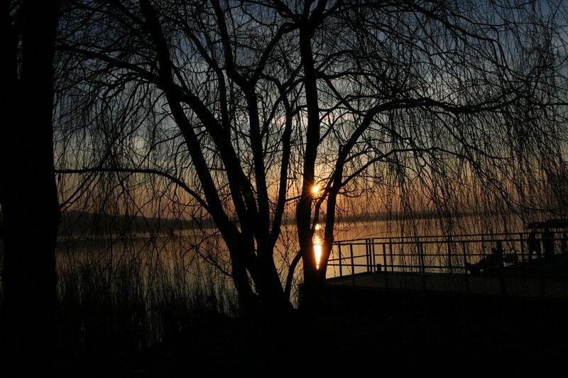 lake sunset landscape varese