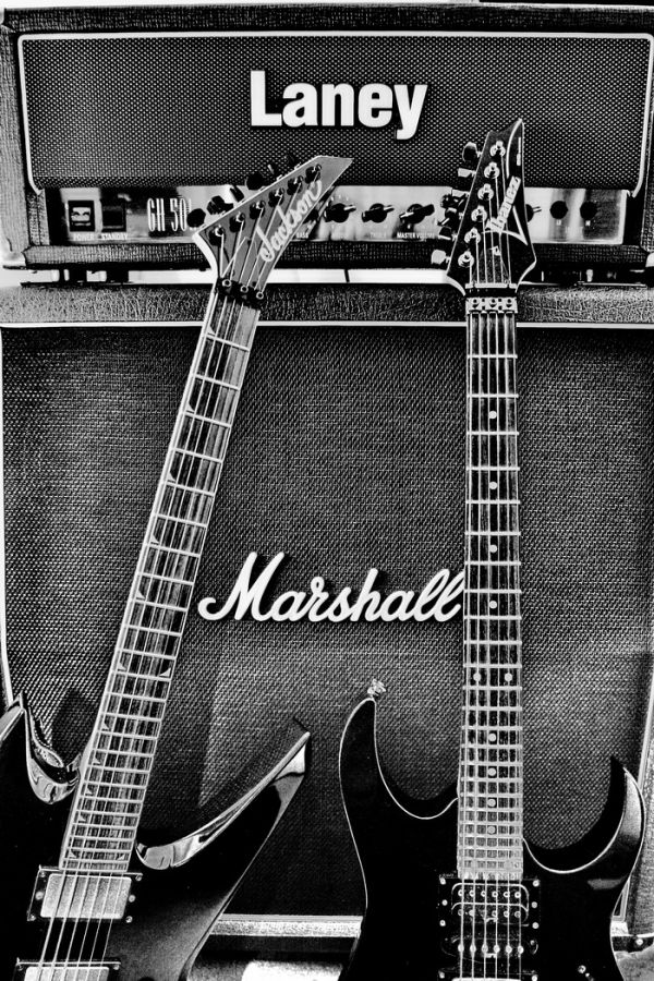 music guitar jackson ibanex marshall laney
