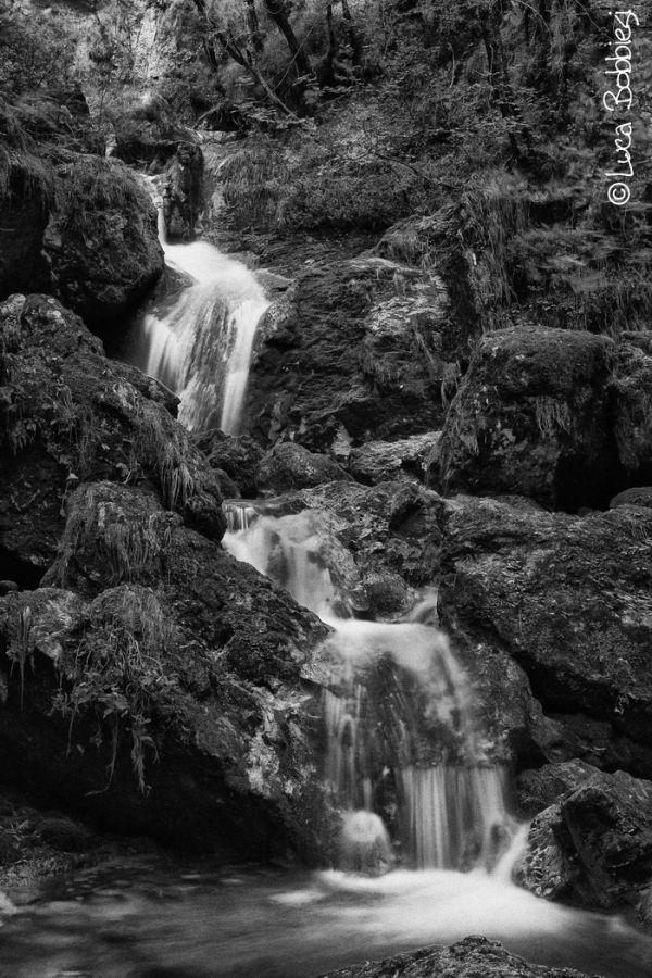 White Stream