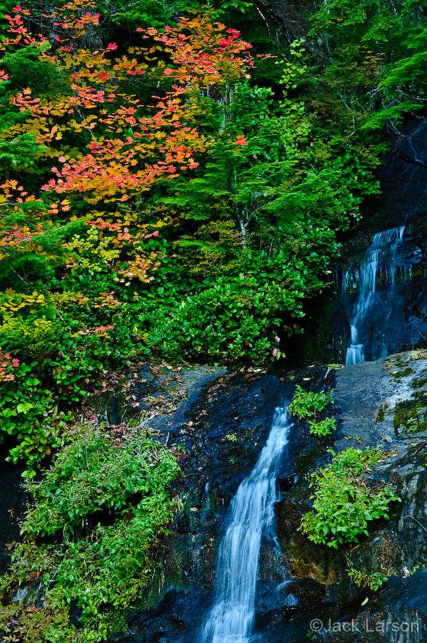 Mary's Peak Waterfall