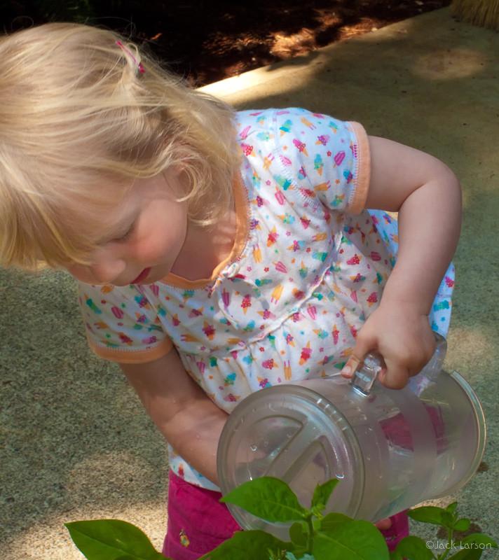 GardenerAtWork