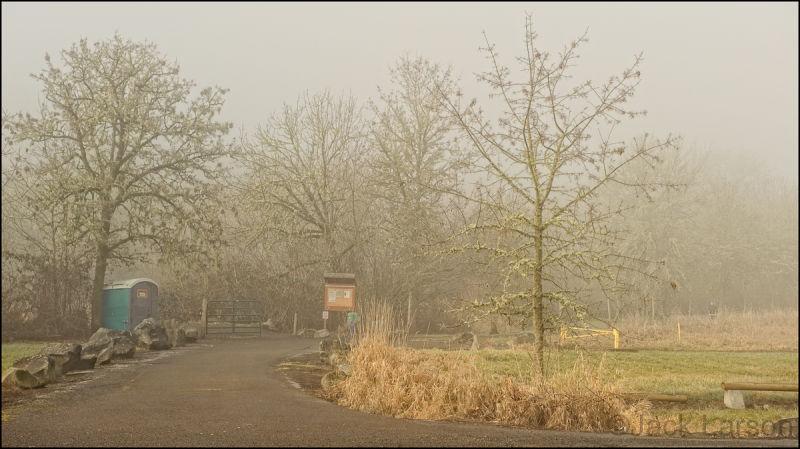 FoggyPark