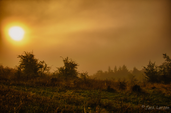 Foggy HDR#3