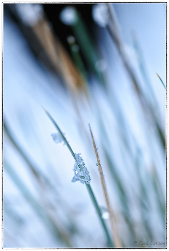 Snow&IceAbstract