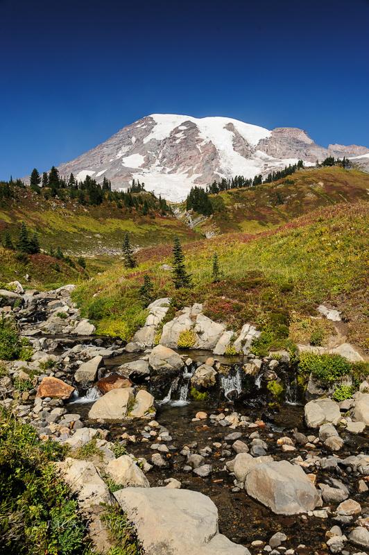 A Rainier Creek