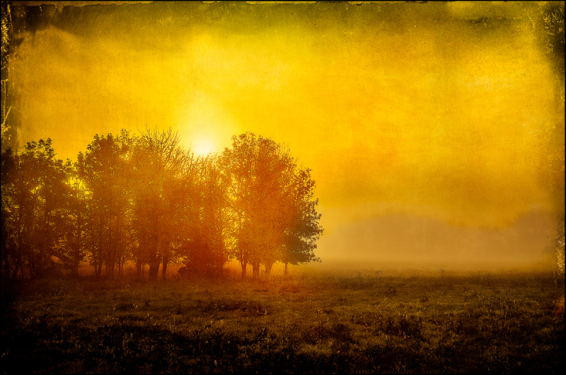 Colorful Fog