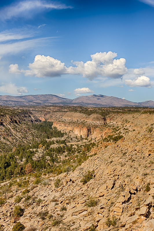 Looking Down Bandelier Canyon
