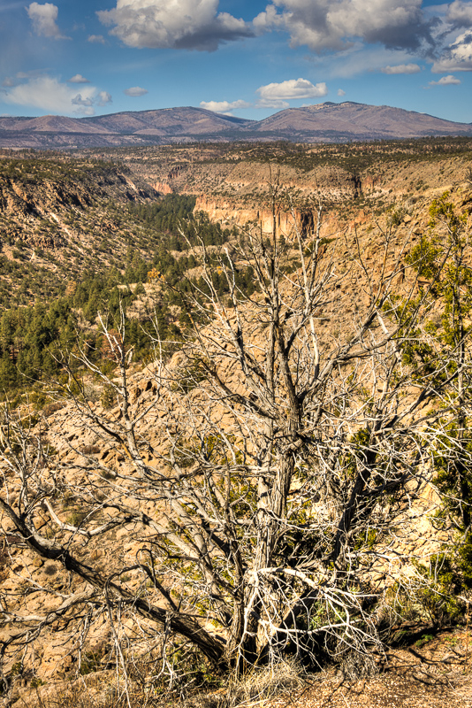Looking Down Bandelier Canyon #2