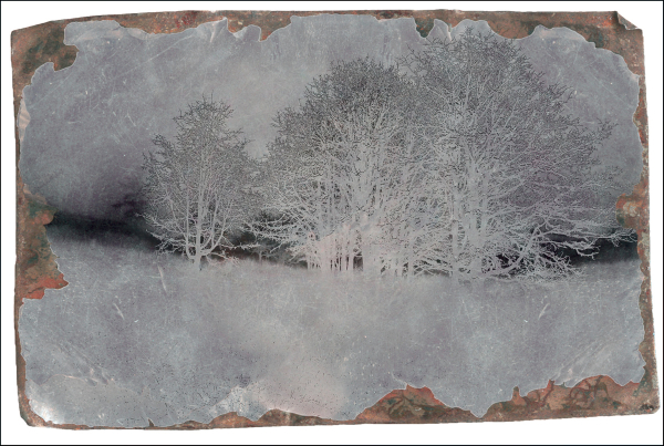 Solarized w/Tintype Overlay