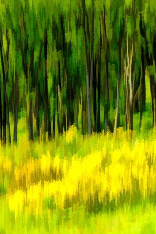 Impressionism #2