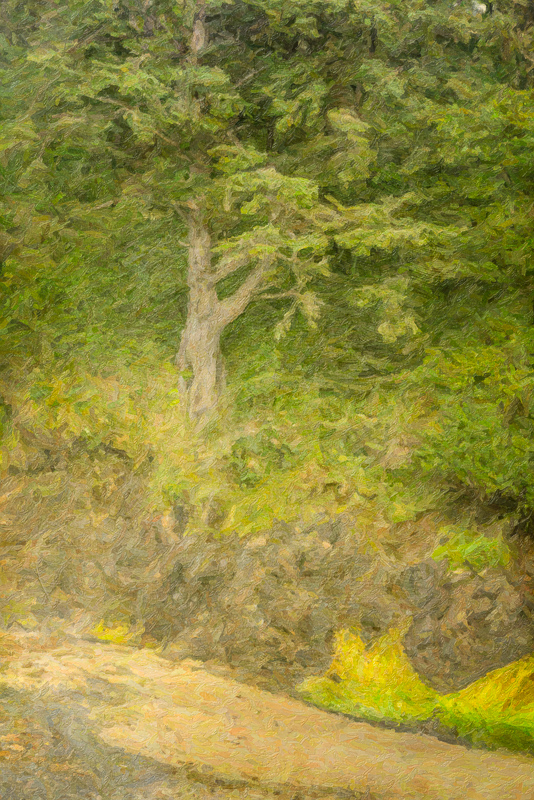 Snap Art Impasto Impressionism and Capability Brow