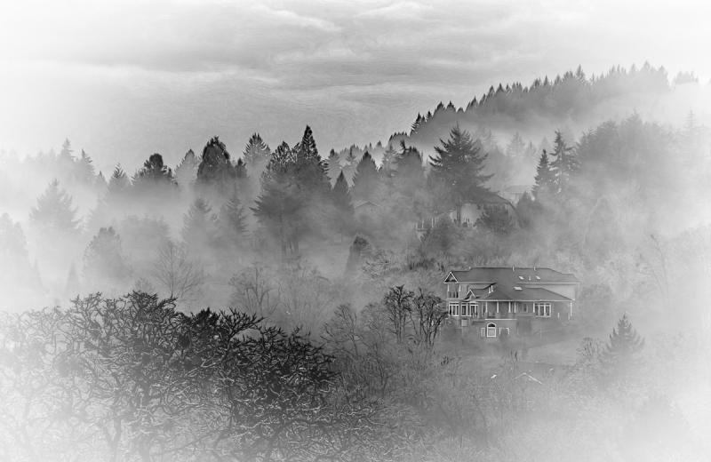 Lots of Fog (Macphun Tonality Pro)