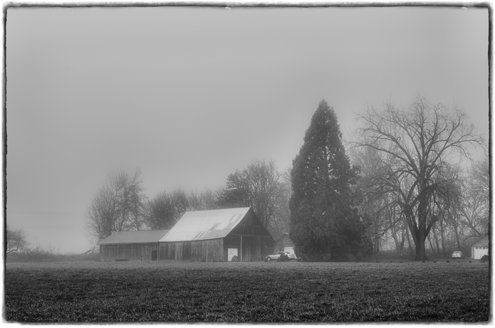 Fog in the Country BW