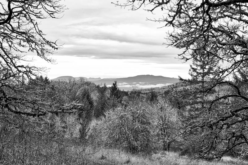 Coastal Range View BW