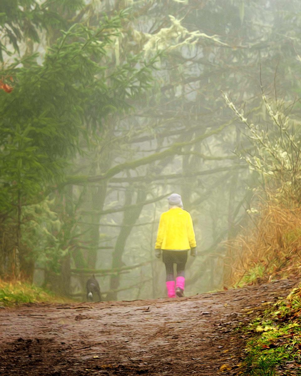 Fog Colors