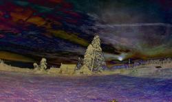 Highland Avenue Sunrise (Fisheye) J Olives Texture