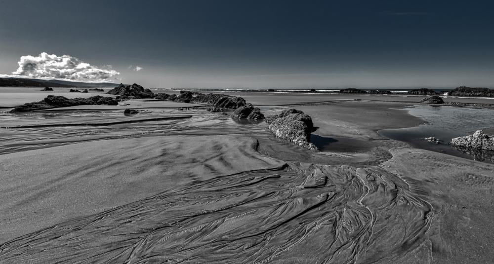 Quail Beach Series